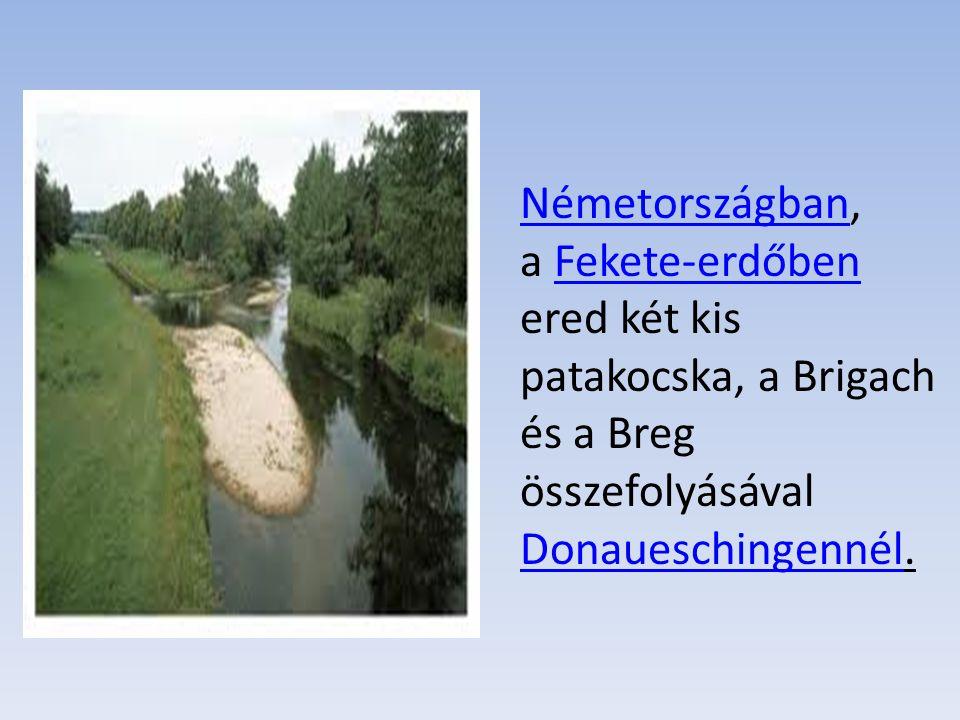 NémetországbanNémetországban, a Fekete-erdőben ered két kis patakocska, a Brigach és a Breg összefolyásával Donaueschingennél.Fekete-erdőben Donauesch