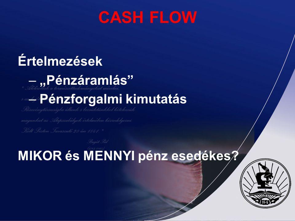 """CASH FLOW Értelmezések – """"Pénzáramlás"""" – Pénzforgalmi kimutatás MIKOR és MENNYI pénz esedékes?"""