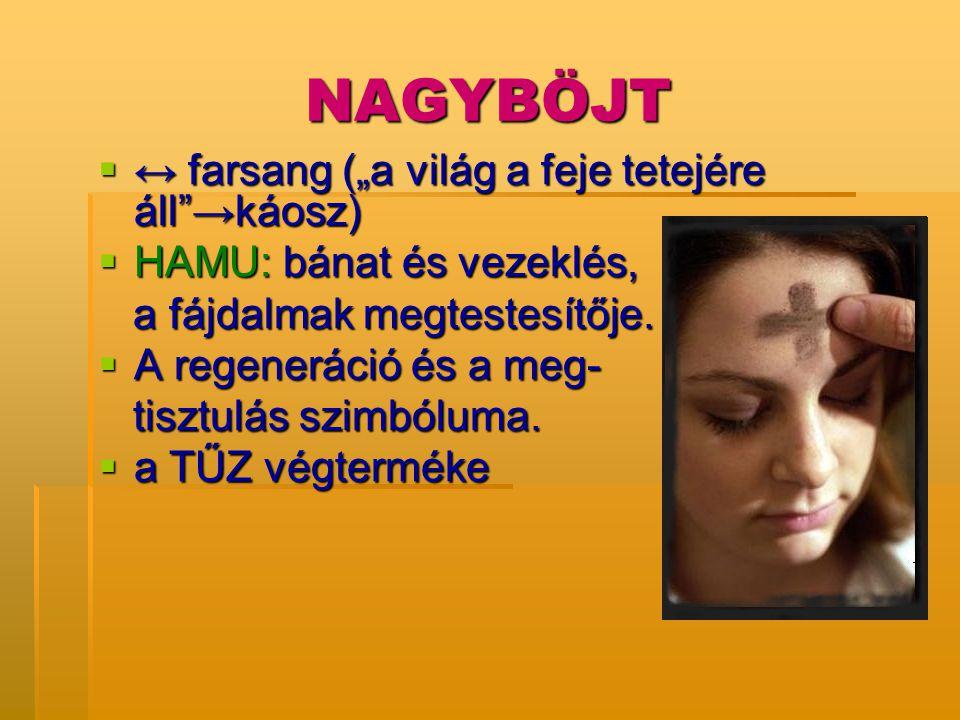 """NAGYBÖJT  ↔ farsang (""""a világ a feje tetejére áll""""→káosz)  HAMU: bánat és vezeklés, a fájdalmak megtestesítője. a fájdalmak megtestesítője.  A rege"""