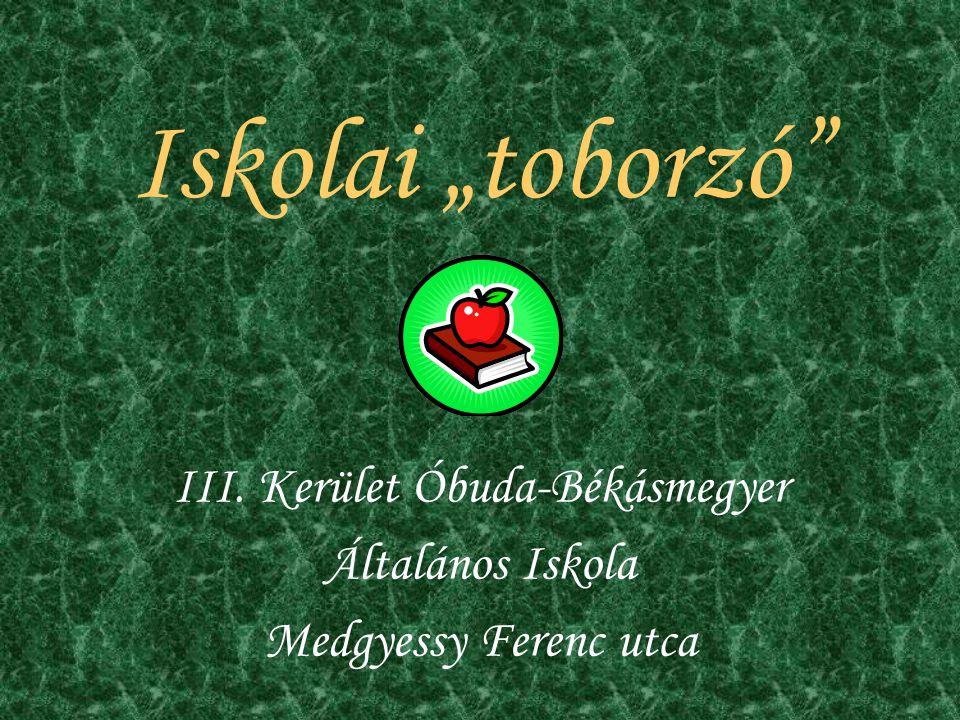 """Iskolai """"toborzó III. Kerület Óbuda-Békásmegyer Általános Iskola Medgyessy Ferenc utca"""