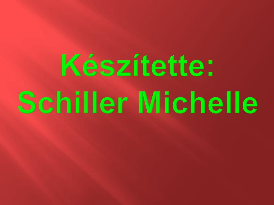 Készítette: Schiller Michelle