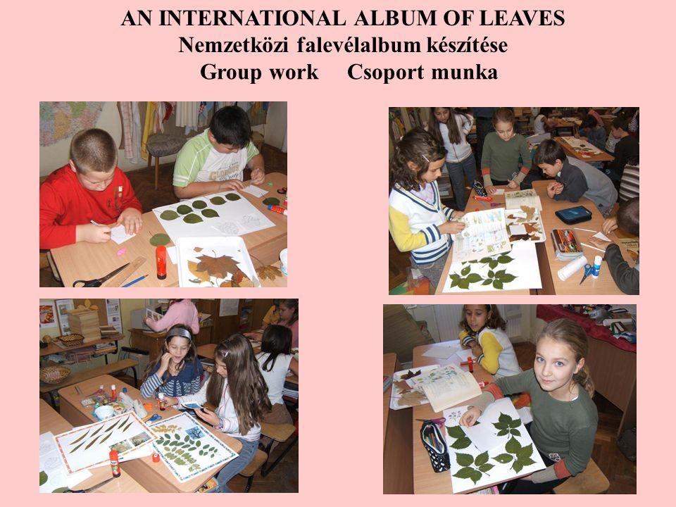 AN INTERNATIONAL ALBUM OF LEAVES Nemzetközi falevélalbum készítése Group work Csoport munka