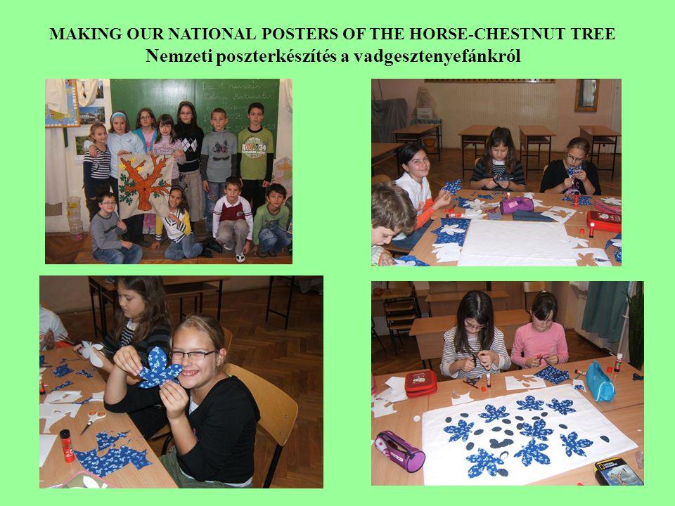 MAKING OUR NATIONAL POSTERS OF THE HORSE-CHESTNUT TREE Nemzeti poszterkészítés a vadgesztenyefánkról