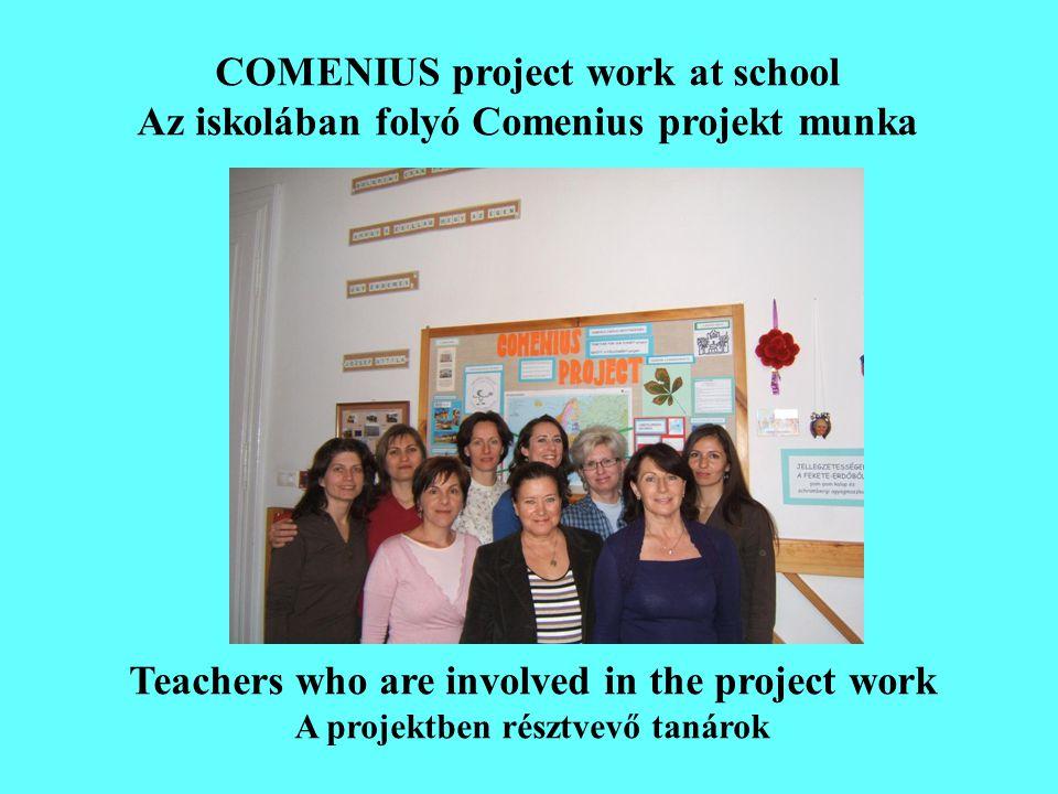 CLASSES INVOLVED IN THE PROJECT A projektben résztvevő osztályok