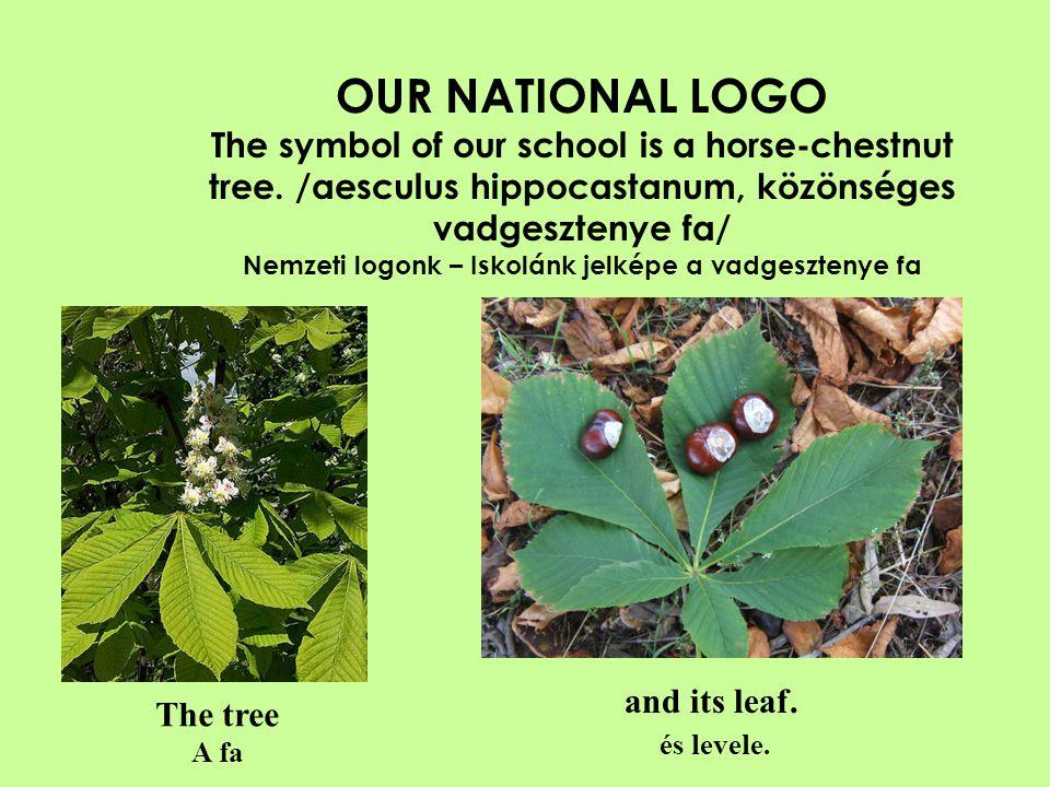 OUR NATIONAL LOGO AND STAMP A nemzeti logonk és a róla készült bélyegző.