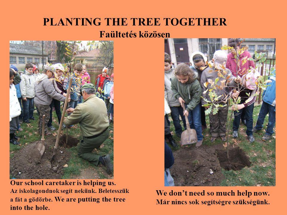 PLANTING THE TREE TOGETHER Faültetés közösen Our school caretaker is helping us.