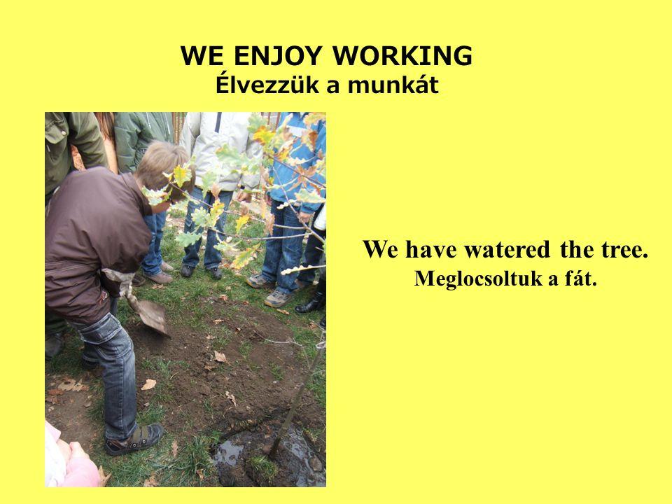 WE ENJOY WORKING Élvezzük a munkát We have watered the tree. Meglocsoltuk a fát.