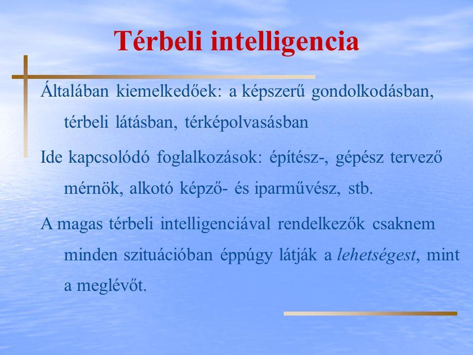 Térbeli intelligencia Általában kiemelkedőek: a képszerű gondolkodásban, térbeli látásban, térképolvasásban Ide kapcsolódó foglalkozások: építész-, gé