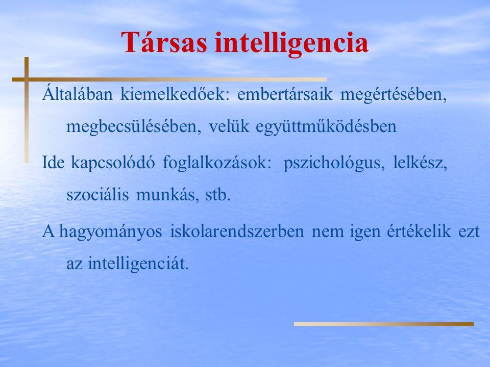 Társas intelligencia Általában kiemelkedőek: embertársaik megértésében, megbecsülésében, velük együttműködésben Ide kapcsolódó foglalkozások: pszichol