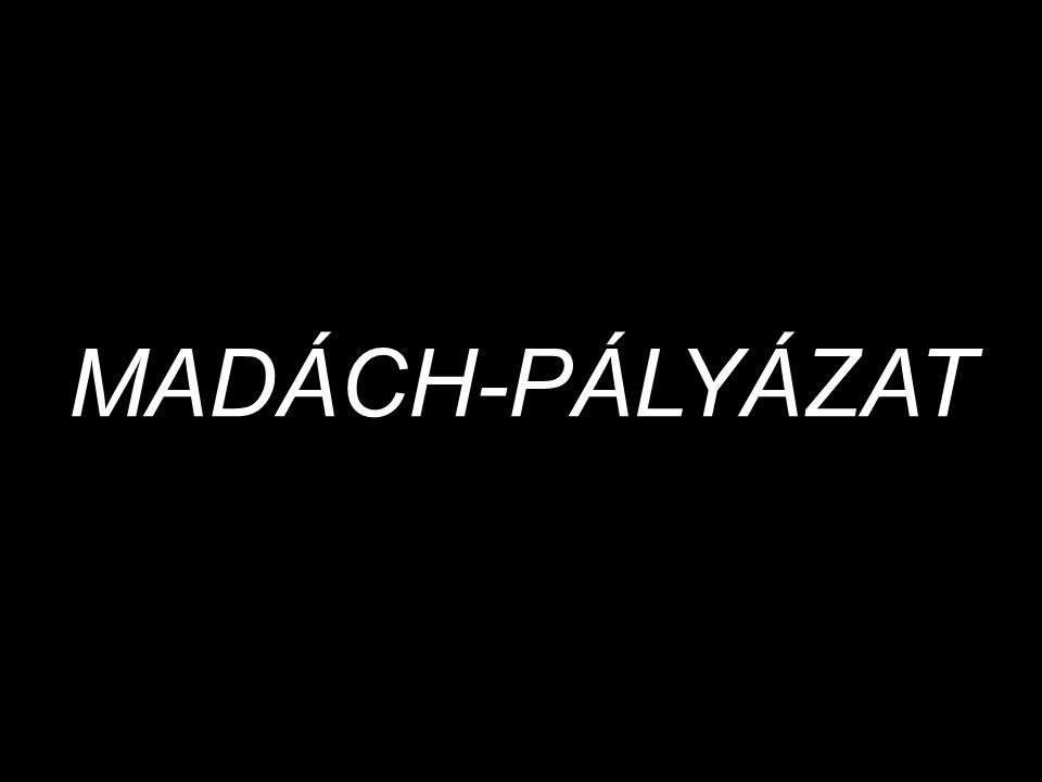 MADÁCH-PÁLYÁZAT
