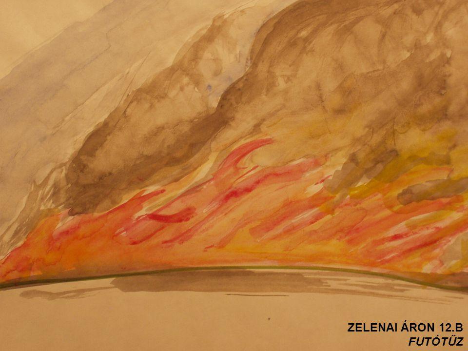 ZELENAI ÁRON 12.B FUTÓTŰZ