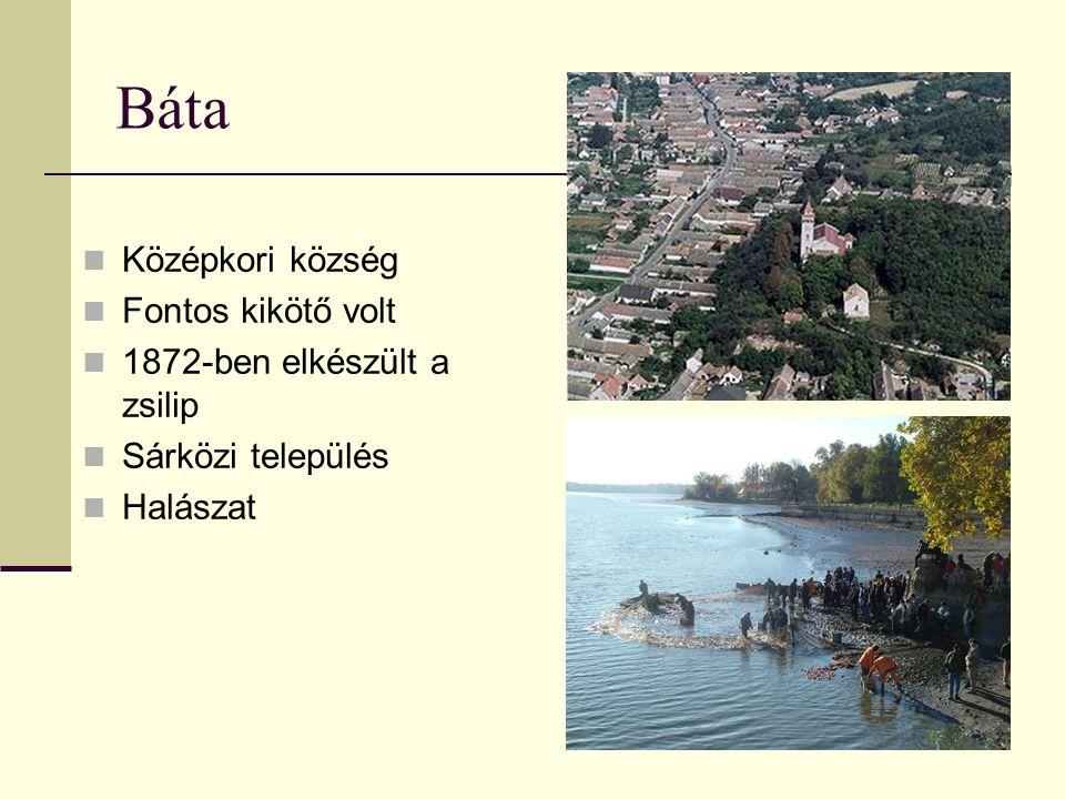 Báta Középkori község Fontos kikötő volt 1872-ben elkészült a zsilip Sárközi település Halászat