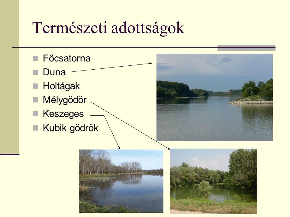 Természeti adottságok Főcsatorna Duna Holtágak Mélygödör Keszeges Kubik gödrök