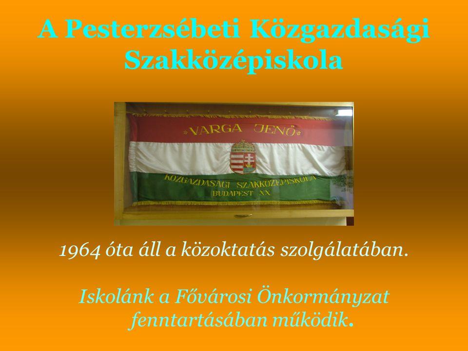 A Pesterzsébeti Közgazdasági Szakközépiskola Iskolánk a Fővárosi Önkormányzat fenntartásában működik. 1964 óta áll a közoktatás szolgálatában.
