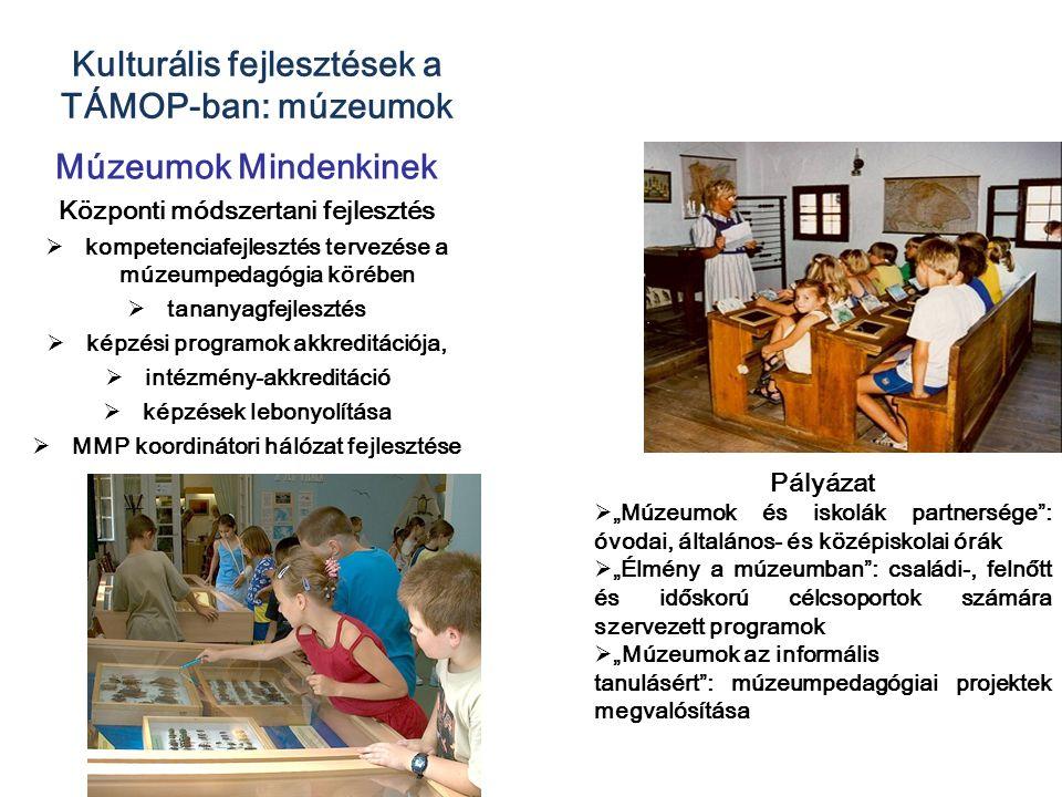 Kulturális fejlesztések a TÁMOP-ban: múzeumok Múzeumok Mindenkinek Központi módszertani fejlesztés  kompetenciafejlesztés tervezése a múzeumpedagógia