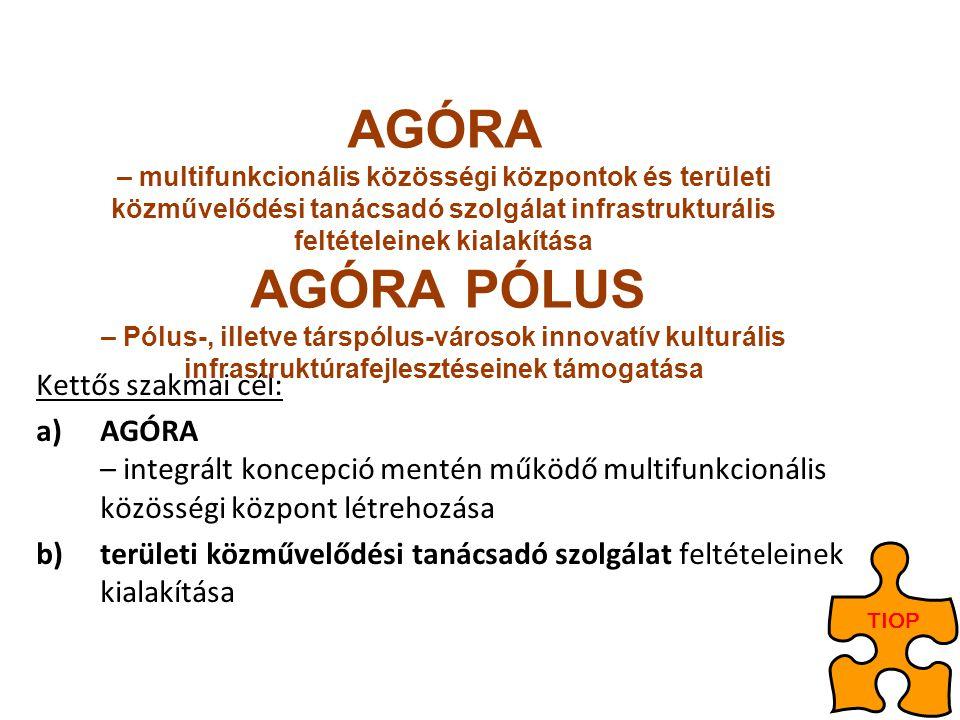 Kettős szakmai cél: a)AGÓRA – integrált koncepció mentén működő multifunkcionális közösségi központ létrehozása b)területi közművelődési tanácsadó szo