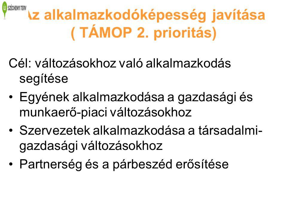 Az alkalmazkodóképesség javítása ( TÁMOP 2. prioritás) Cél: változásokhoz való alkalmazkodás segítése Egyének alkalmazkodása a gazdasági és munkaerő-p
