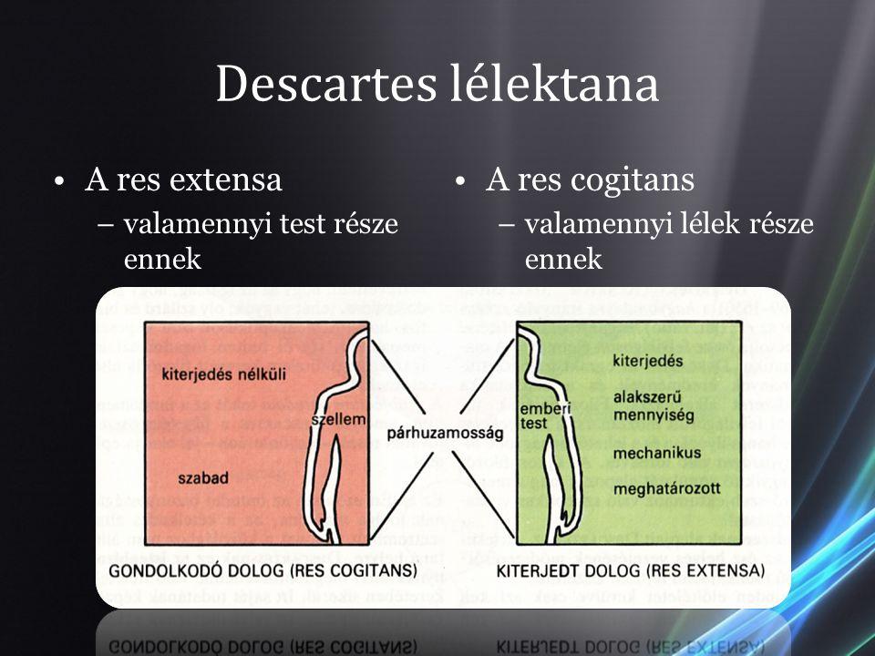 Descartes lélektana A res extensa –valamennyi test része ennek A res cogitans –valamennyi lélek része ennek