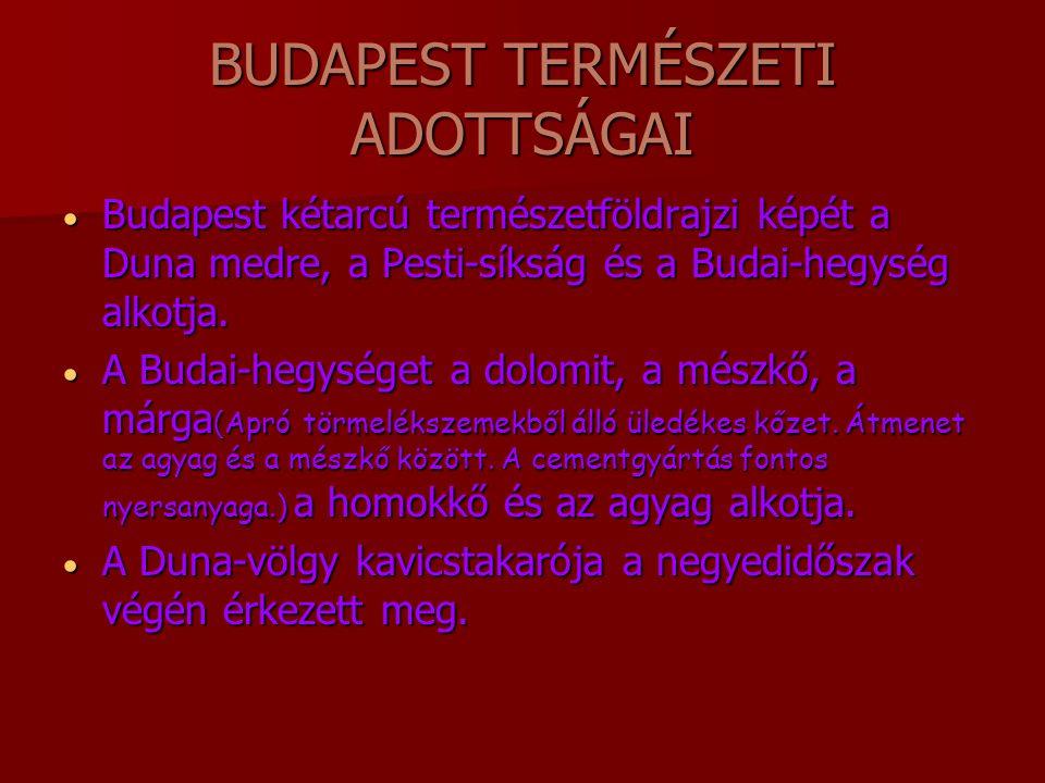 BUDAPEST TERMÉSZETI ADOTTSÁGAI BBBBudapest kétarcú természetföldrajzi képét a Duna medre, a Pesti-síkság és a Budai-hegység alkotja. AAAA Buda