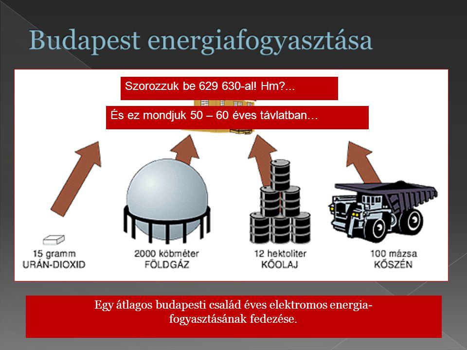 Egy átlagos budapesti család éves elektromos energia- fogyasztásának fedezése. Szorozzuk be 629 630-al! Hm?... És ez mondjuk 50 – 60 éves távlatban…