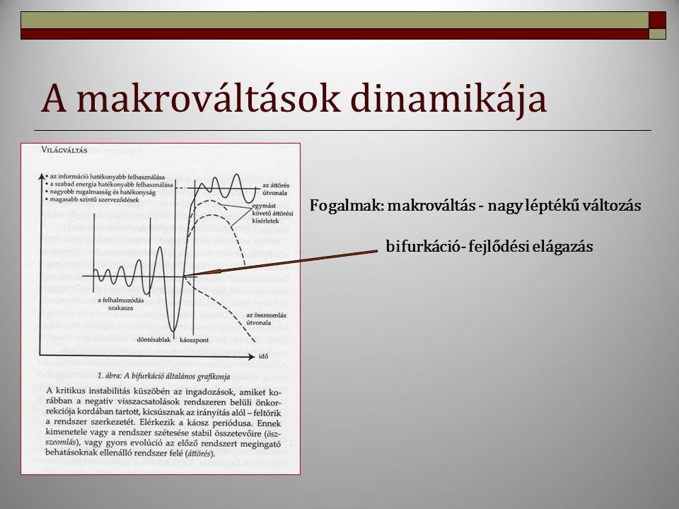 A makrováltások dinamikája Fogalmak: makrováltás - nagy léptékű változás bifurkáció- fejlődési elágazás