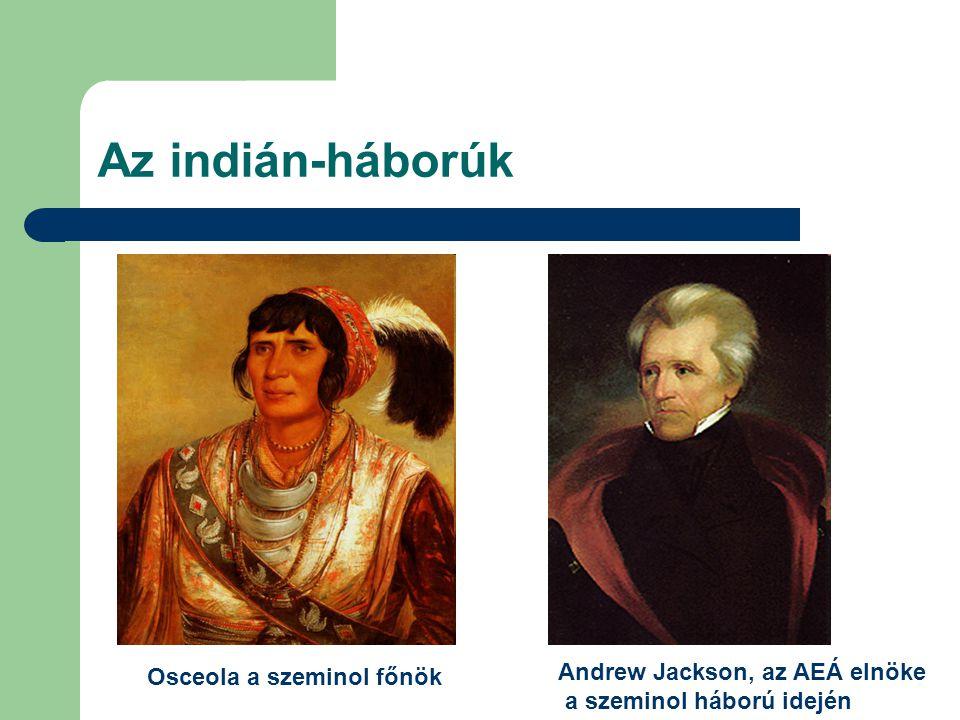 Az indián-háborúk Osceola a szeminol főnök Andrew Jackson, az AEÁ elnöke a szeminol háború idején
