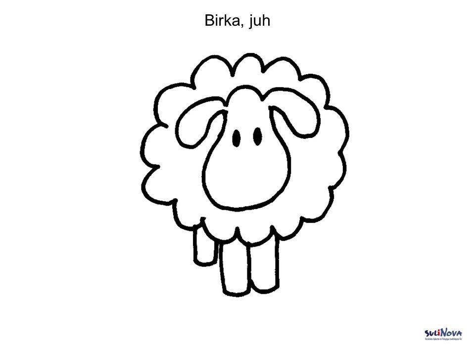 Birka, juh