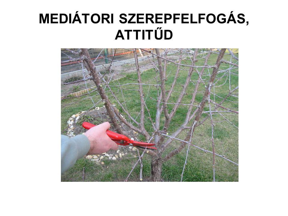MEDIÁTORI SZEREPFELFOGÁS, ATTITŰD