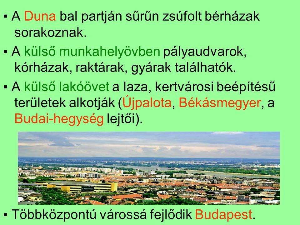 ▪ A Duna bal partján sűrűn zsúfolt bérházak sorakoznak. ▪ A külső munkahelyövben pályaudvarok, kórházak, raktárak, gyárak találhatók. ▪ A külső lakóöv