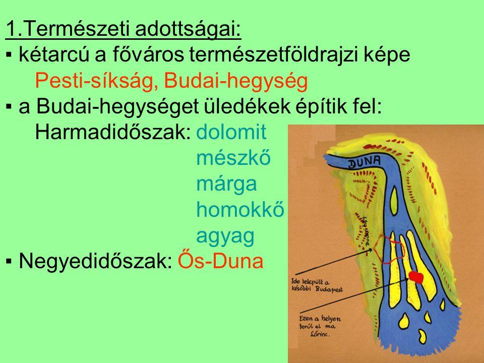 1.Természeti adottságai: ▪ kétarcú a főváros természetföldrajzi képe Pesti-síkság, Budai-hegység ▪ a Budai-hegységet üledékek építik fel: Harmadidősza