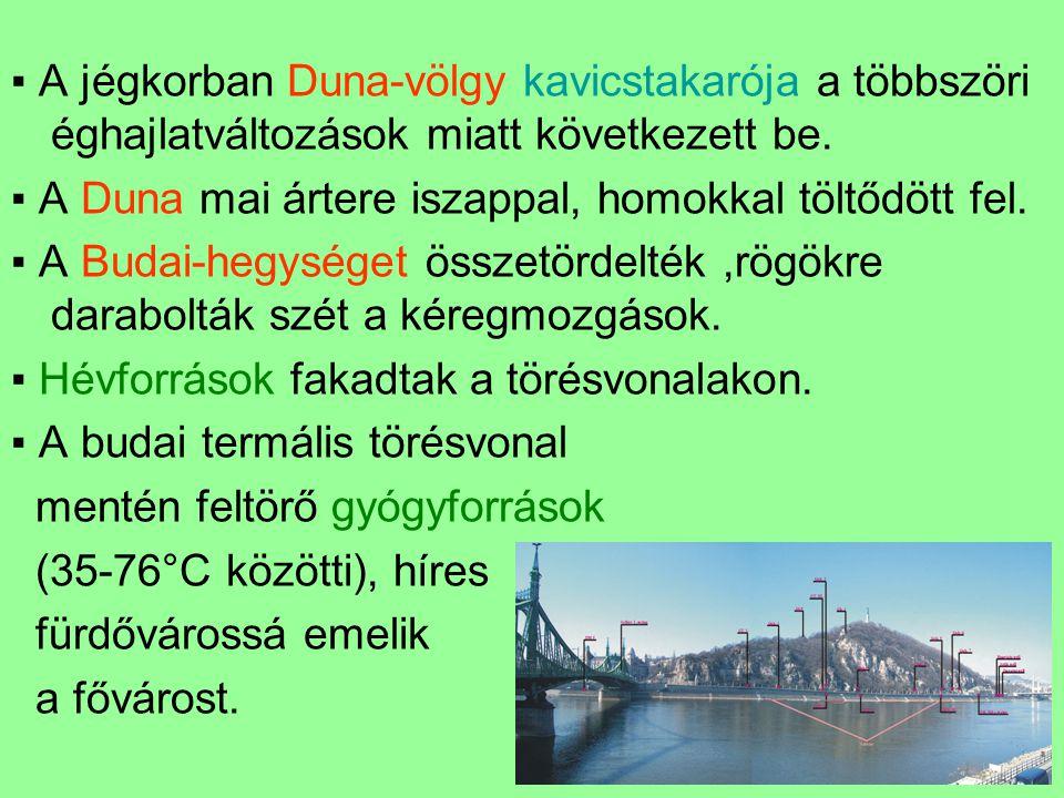 ▪ A jégkorban Duna-völgy kavicstakarója a többszöri éghajlatváltozások miatt következett be. ▪ A Duna mai ártere iszappal, homokkal töltődött fel. ▪ A