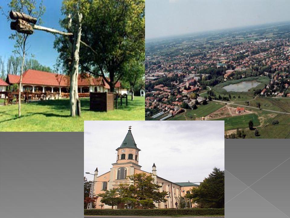  községgé válás Jász-Lajos-Mizse nagyközség néven. A népesség egyre nőtt, 1890-ben már 7000 lakost számlálnak és határában 539 tanyát. Lajosmizse név