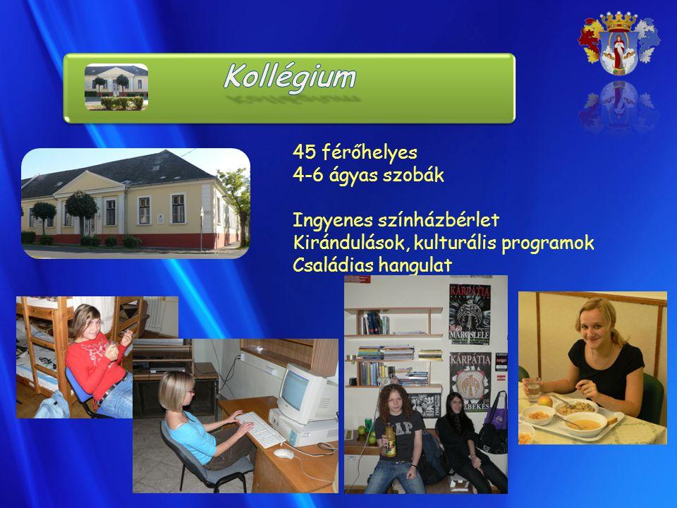 45 férőhelyes 4-6 ágyas szobák Ingyenes színházbérlet Kirándulások, kulturális programok Családias hangulat