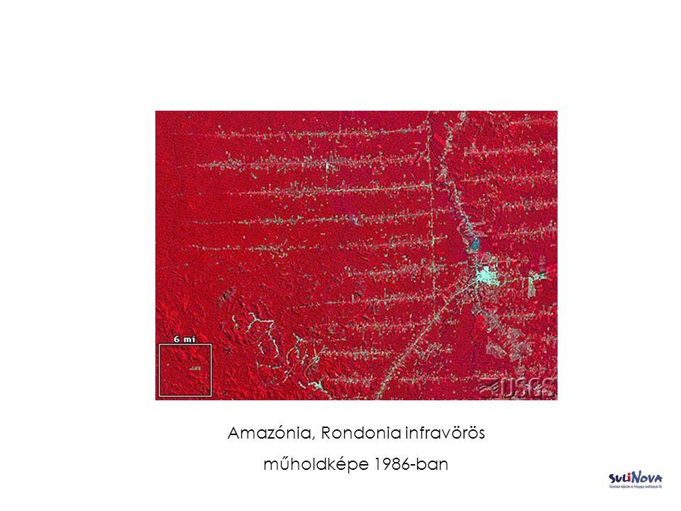 Amazónia, Rondonia infravörös műholdképe 1986-ban