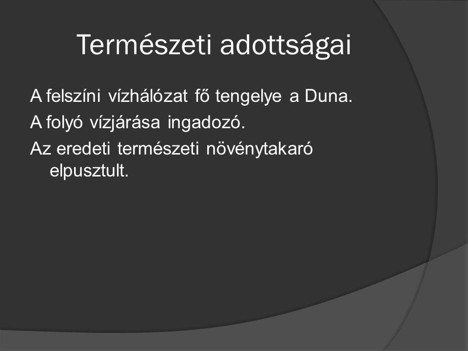 Természeti adottságai A felszíni vízhálózat fő tengelye a Duna.