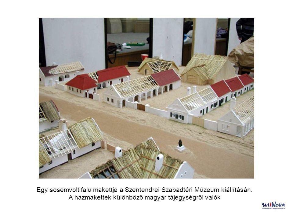 Egy sosemvolt falu makettje a Szentendrei Szabadtéri Múzeum kiállításán. A házmakettek különböző magyar tájegységről valók