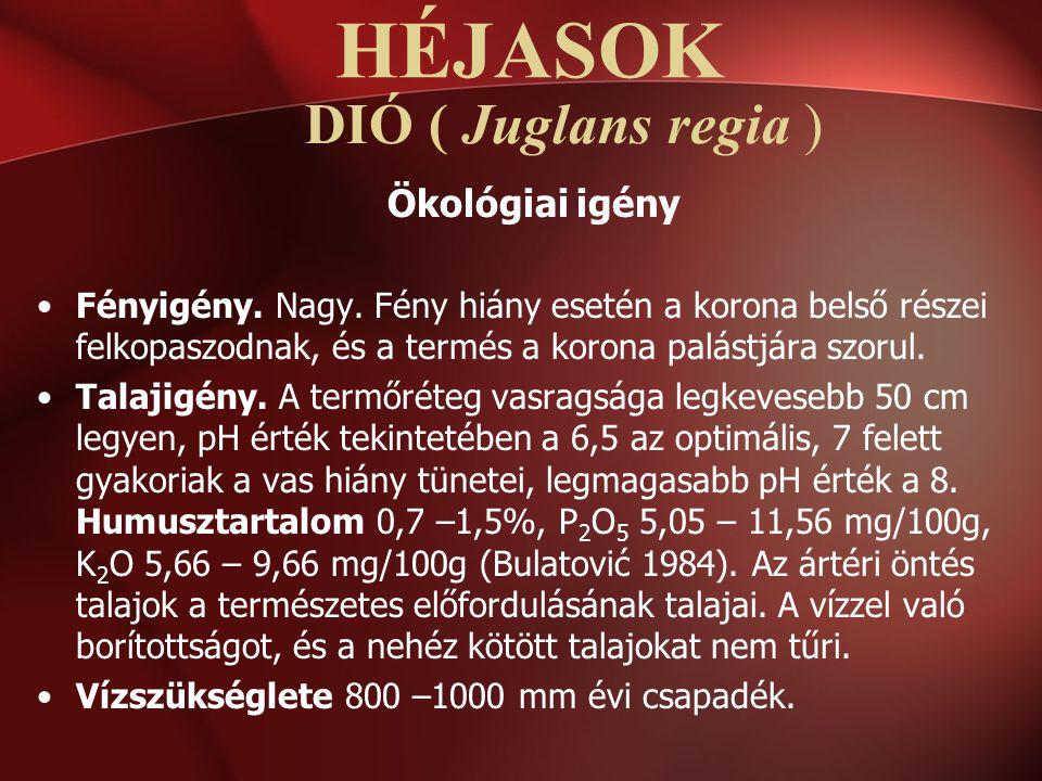 DIÓ ( Juglans regia ) Ökológiai igény Fényigény. Nagy. Fény hiány esetén a korona belső részei felkopaszodnak, és a termés a korona palástjára szorul.