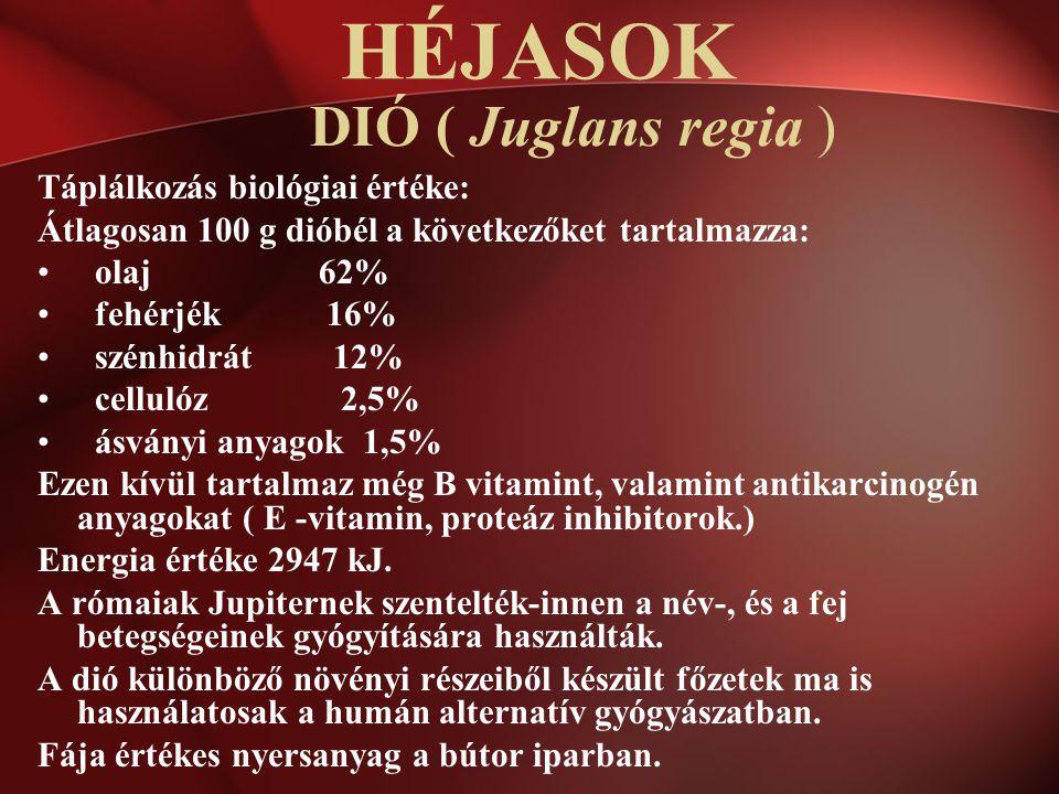 DIÓ ( Juglans regia ) Táplálkozás biológiai értéke: Átlagosan 100 g dióbél a következőket tartalmazza: olaj 62% fehérjék 16% szénhidrát 12% cellulóz 2