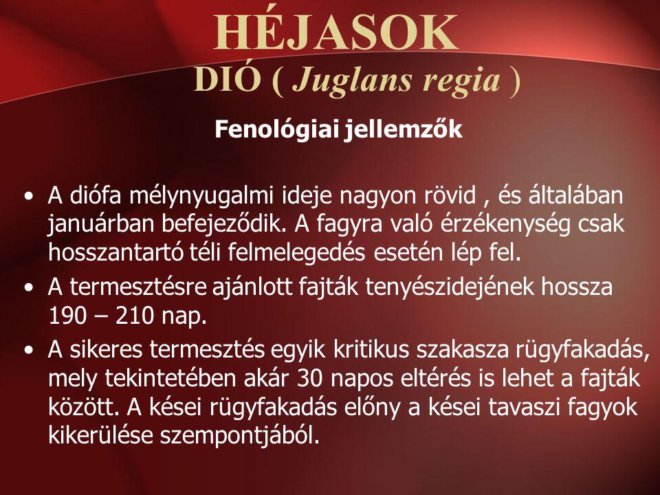DIÓ ( Juglans regia ) Fenológiai jellemzők A diófa mélynyugalmi ideje nagyon rövid, és általában januárban befejeződik. A fagyra való érzékenység csak