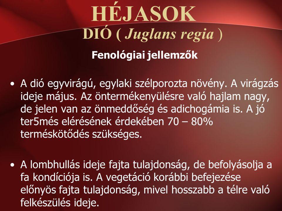 DIÓ ( Juglans regia ) Fenológiai jellemzők A dió egyvirágú, egylaki szélporozta növény. A virágzás ideje május. Az öntermékenyülésre való hajlam nagy,