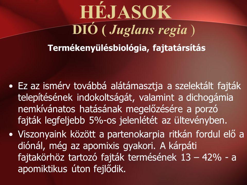 DIÓ ( Juglans regia ) Termékenyülésbiológia, fajtatársítás Ez az ismérv továbbá alátámasztja a szelektált fajták telepítésének indokoltságát, valamint
