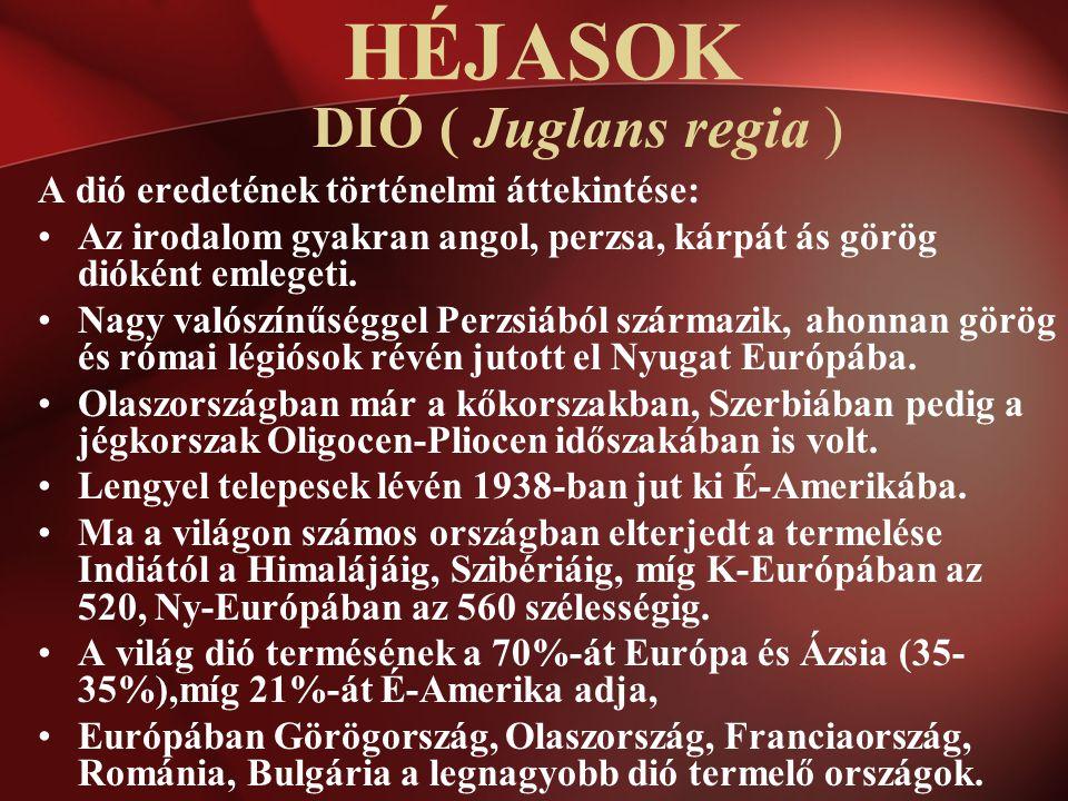 DIÓ ( Juglans regia ) A dió eredetének történelmi áttekintése: Az irodalom gyakran angol, perzsa, kárpát ás görög dióként emlegeti. Nagy valószínűségg
