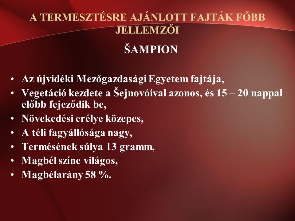 ŠAMPION Az újvidéki Mezőgazdasági Egyetem fajtája, Vegetáció kezdete a Šejnovóival azonos, és 15 – 20 nappal előbb fejeződik be, Növekedési erélye köz