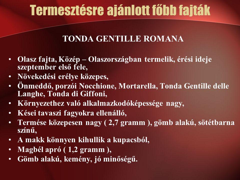 TONDA GENTILLE ROMANA Olasz fajta, Közép – Olaszországban termelik, érési ideje szeptember első fele, Növekedési erélye közepes, Önmeddő, porzói Nocch