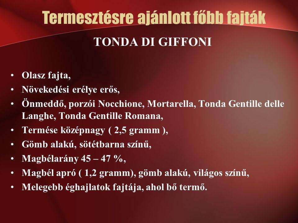 TONDA DI GIFFONI Olasz fajta, Növekedési erélye erős, Önmeddő, porzói Nocchione, Mortarella, Tonda Gentille delle Langhe, Tonda Gentille Romana, Termé