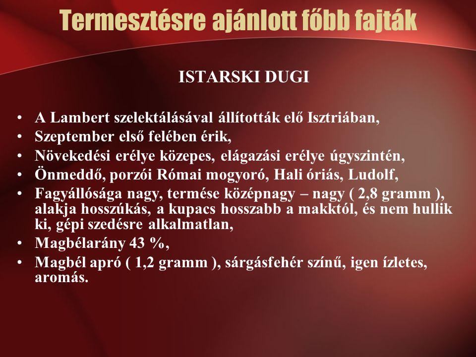 ISTARSKI DUGI A Lambert szelektálásával állították elő Isztriában, Szeptember első felében érik, Növekedési erélye közepes, elágazási erélye úgyszinté