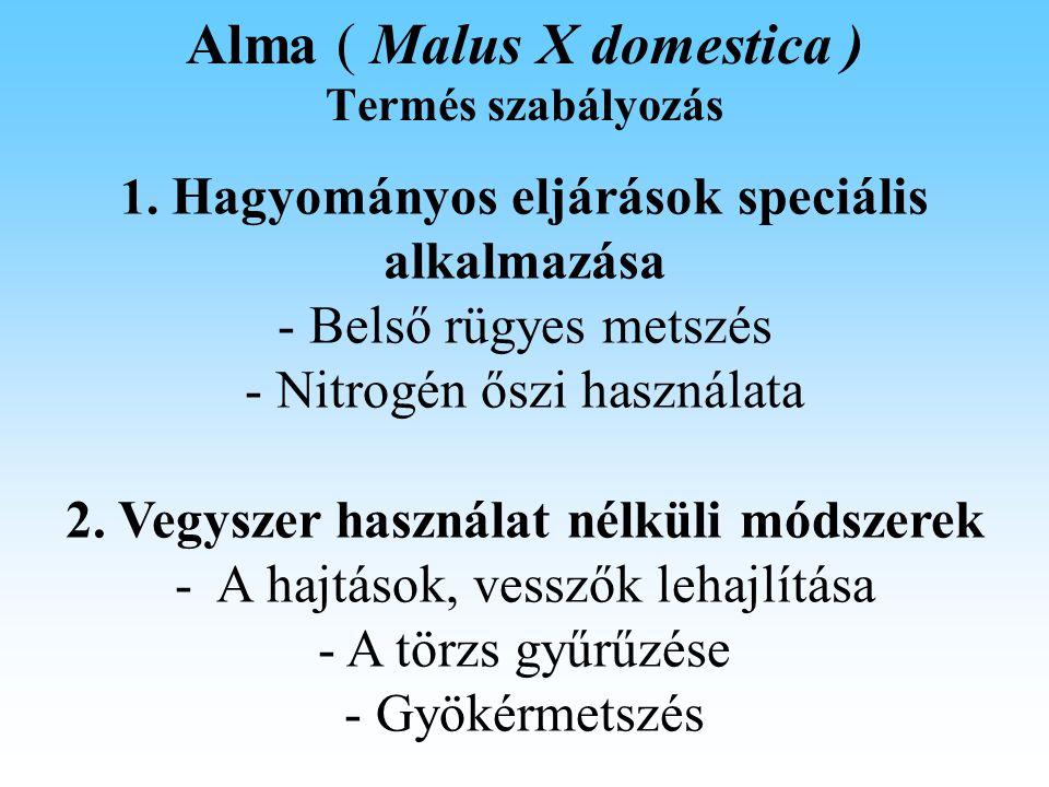Alma ( Malus X domestica ) Termés szabályozás 1.