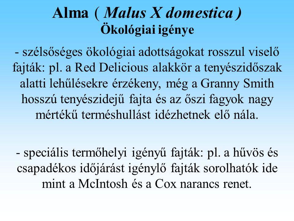 Alma ( Malus X domestica ) Talajerő gazdálkodás Talajművelés: első három év fekete ugar, utána füvesítés.