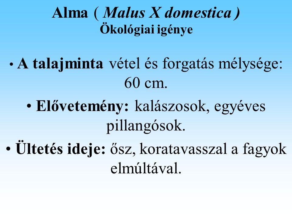 Alma ( Malus X domestica ) Talajerő gazdálkodás Az almatermesztésben a tápanyag ellátottság agrokémiai optimuma több elem esetében nem esik egybe a gyümölcsminőség optimumával.