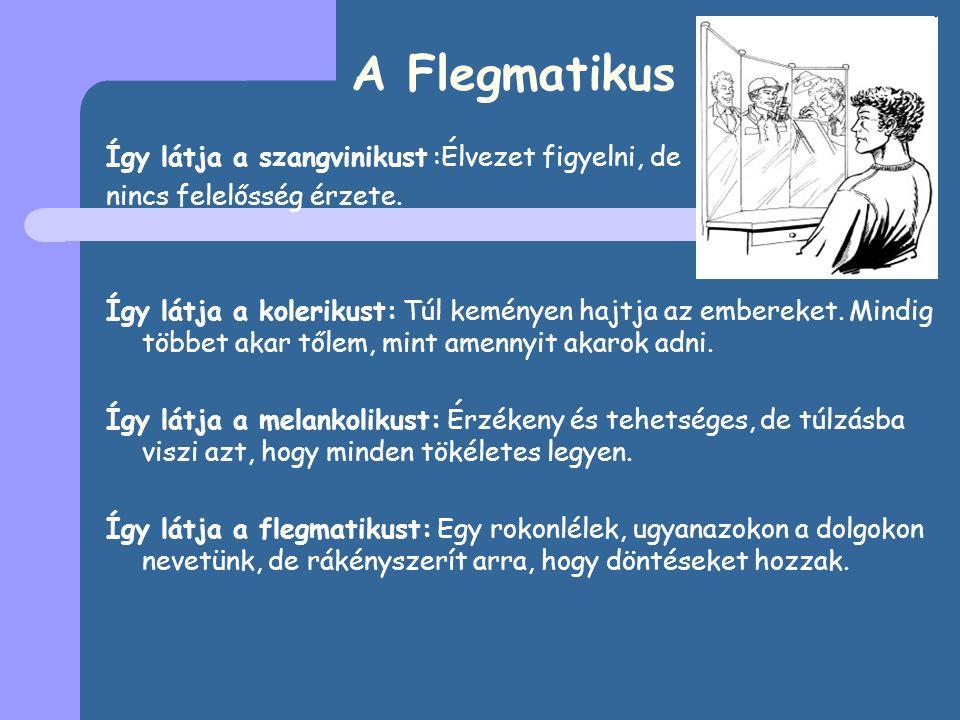 A Flegmatikus Így látja a szangvinikust :Élvezet figyelni, de nincs felelősség érzete.
